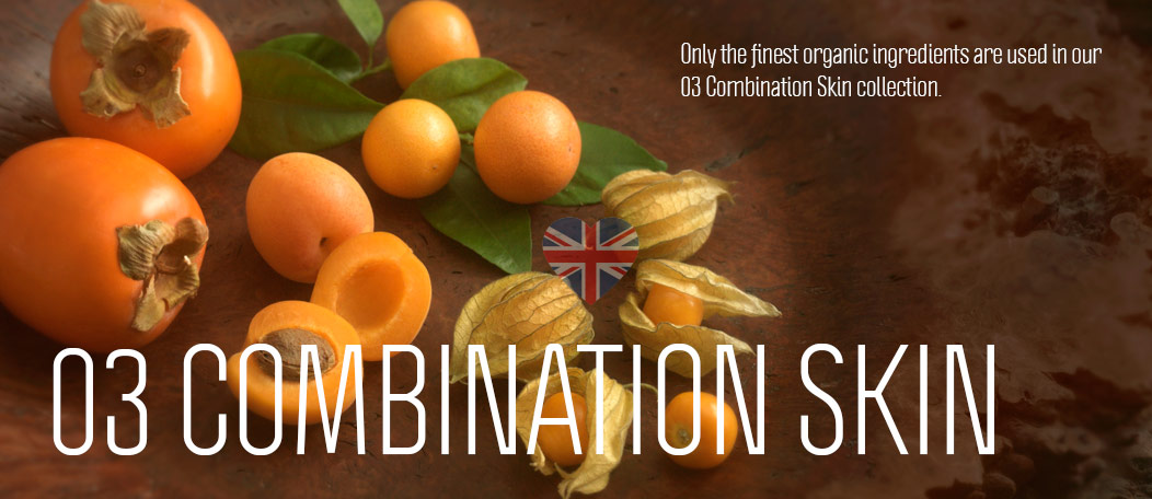 combination-slide